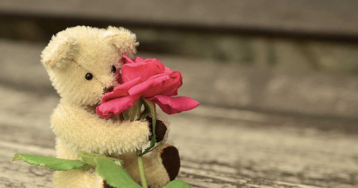 orsacchiotto di peluche che stringe un fiore e le sue emozioni