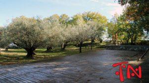 riapertura-castello-sperlinga-16-800x445