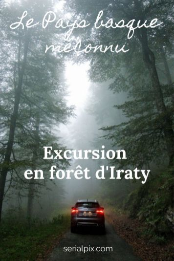 foret d'iraty pays basque