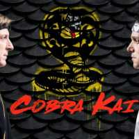 Cobra Kai (Temporada 1-2) HD 720p (Mega)