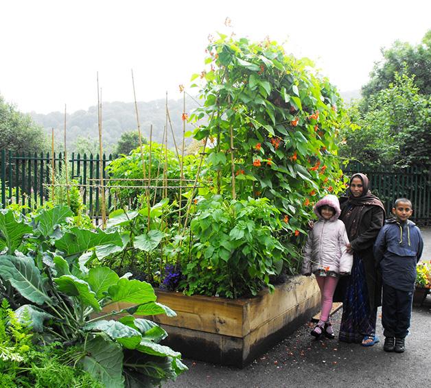 Horta urbana na cidade inglesa de Todmorden