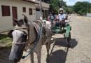 Moradores de distrito de Cantagalo ainta utilizam charrete para locomoção