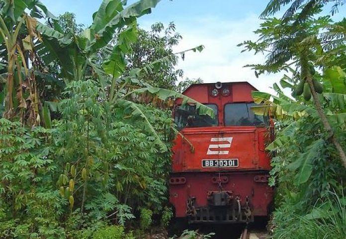 Kereta Membelah Kebun