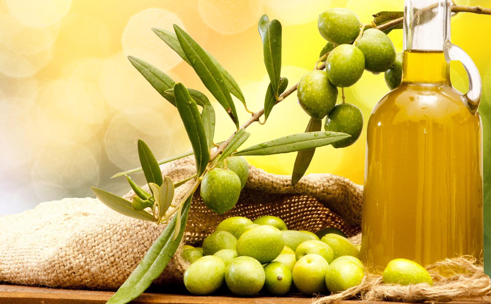 Hasil gambar untuk manfaat minyak zaitun
