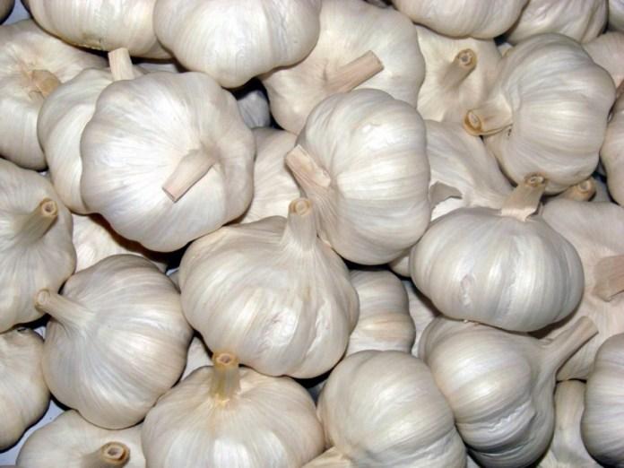 Bawang putih untuk katarak