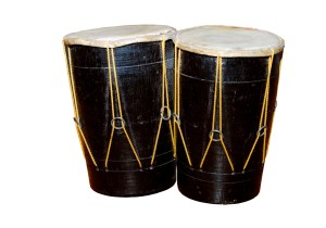 Bongo drums