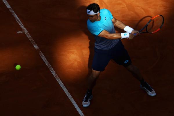 David Ferrer's ranking