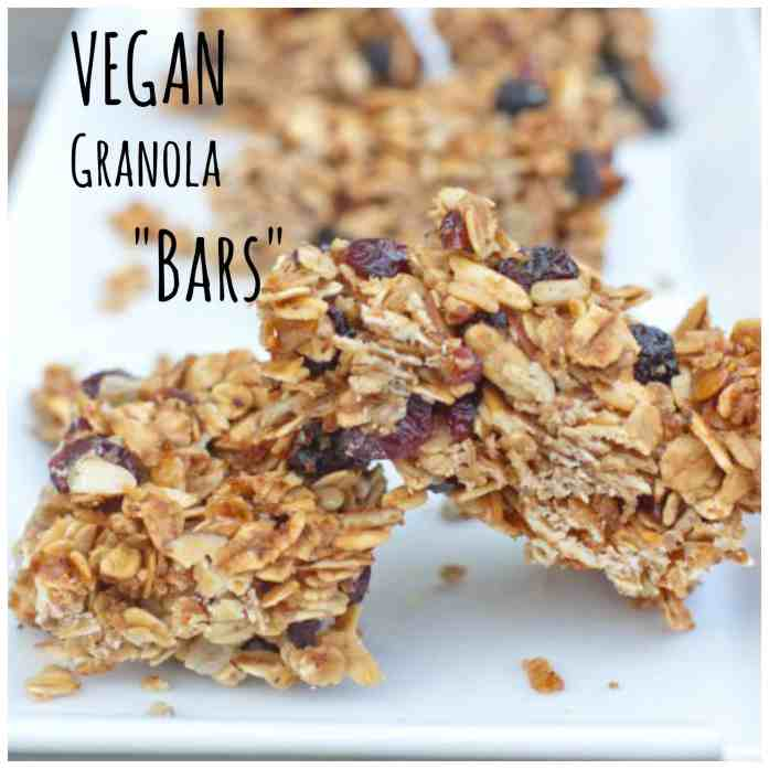 """From Scratch Granola """"Bars"""" that will make your Vegan and Non Vegan friends happy!"""