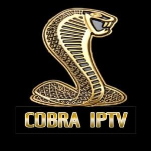 Panel Revendeur Cobra