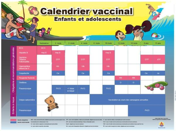 Calendrier vaccinal 2015