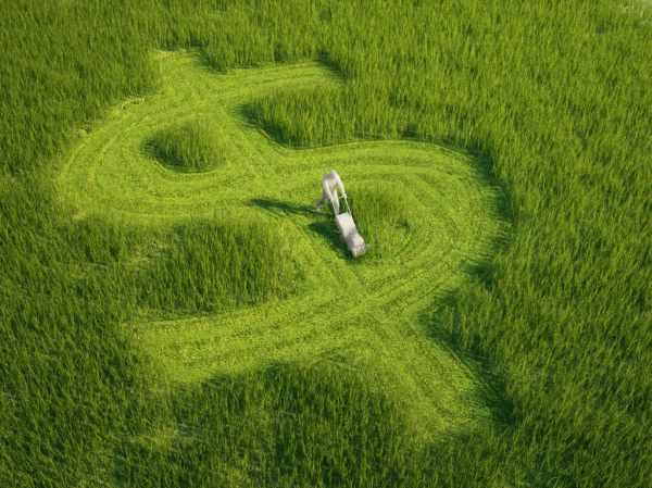 two keys making money in lawn