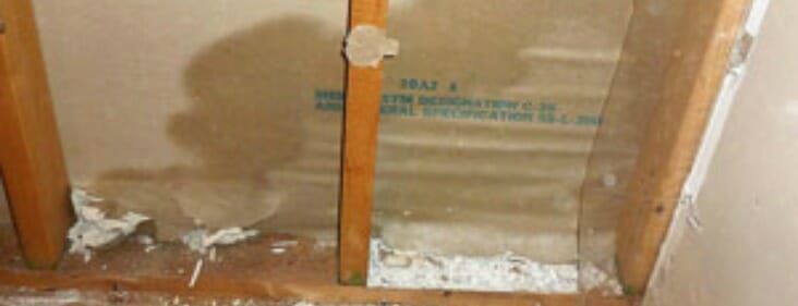 Drying Drywall After Water Damage 5 Effective DIY Steps