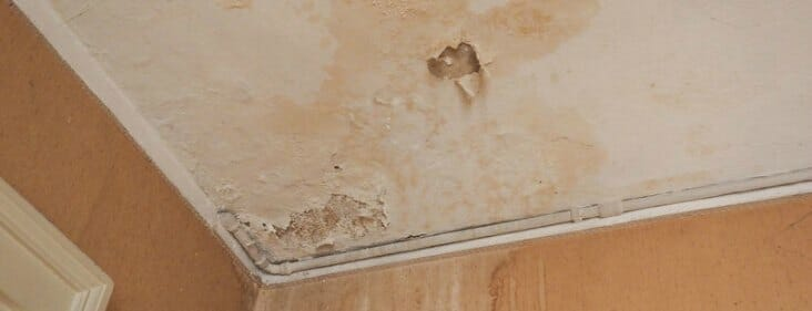 How to Find a Water Leak Inside the Wall: 6 Quick Steps