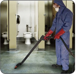 Toilet Deep Cleaning Services in Berkshire  ServiceMaster
