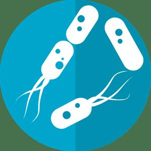 Icône bactéries