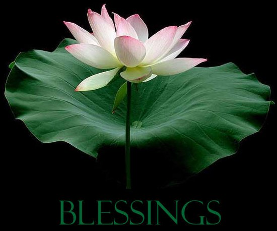Image result for pictures of blessing