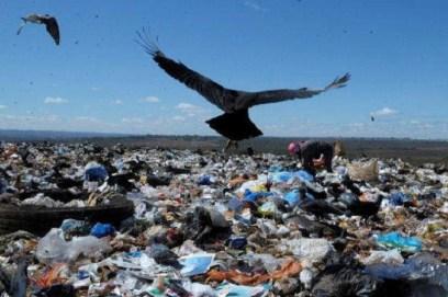 Recolección de material reciclable en un basural es la opción de la población que sufre altos niveles de desempleo para tener ingresos / Reproducción.