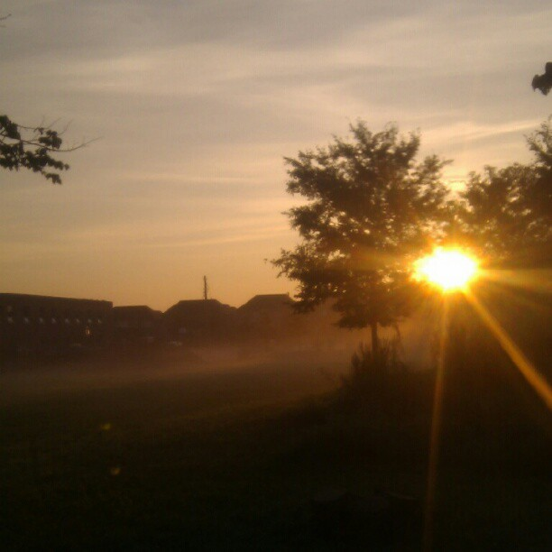 sun rays hope grace