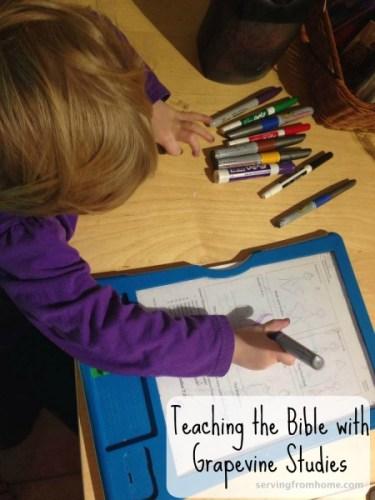 Teaching Bible Grapevine