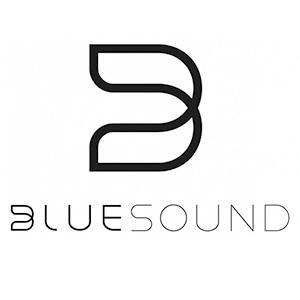 Uygun Fiyatlı ve Kaliteli Bluesound Bluesound Pulse