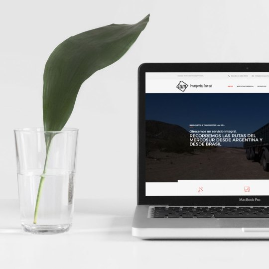diseño web Transportes Lam