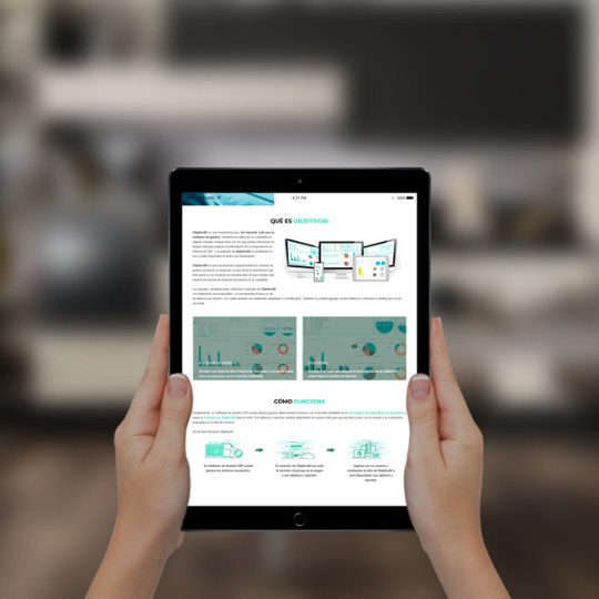 Diseño web para objetivo bi