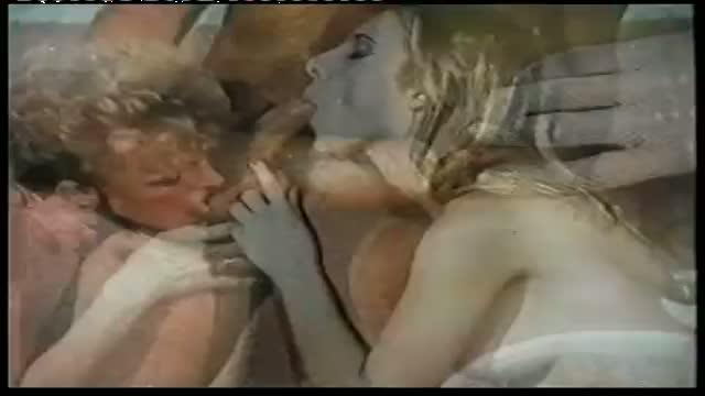 Cicciolina Number One: Ilona Staller non ha fatto sesso con un cavallo!