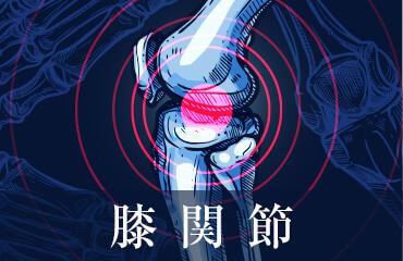 人工膝関節置換術とアイシングシステム