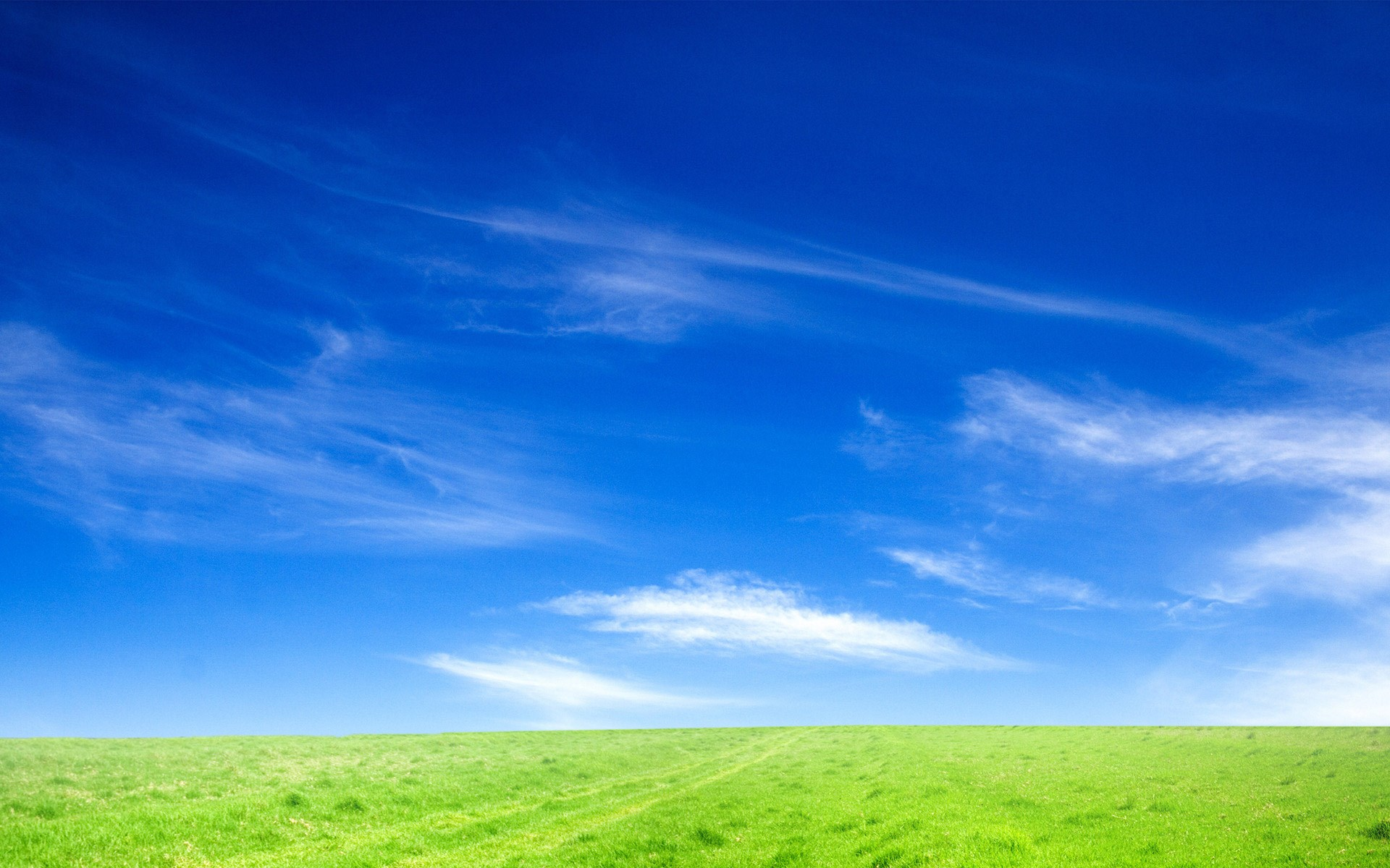 blue sky and green