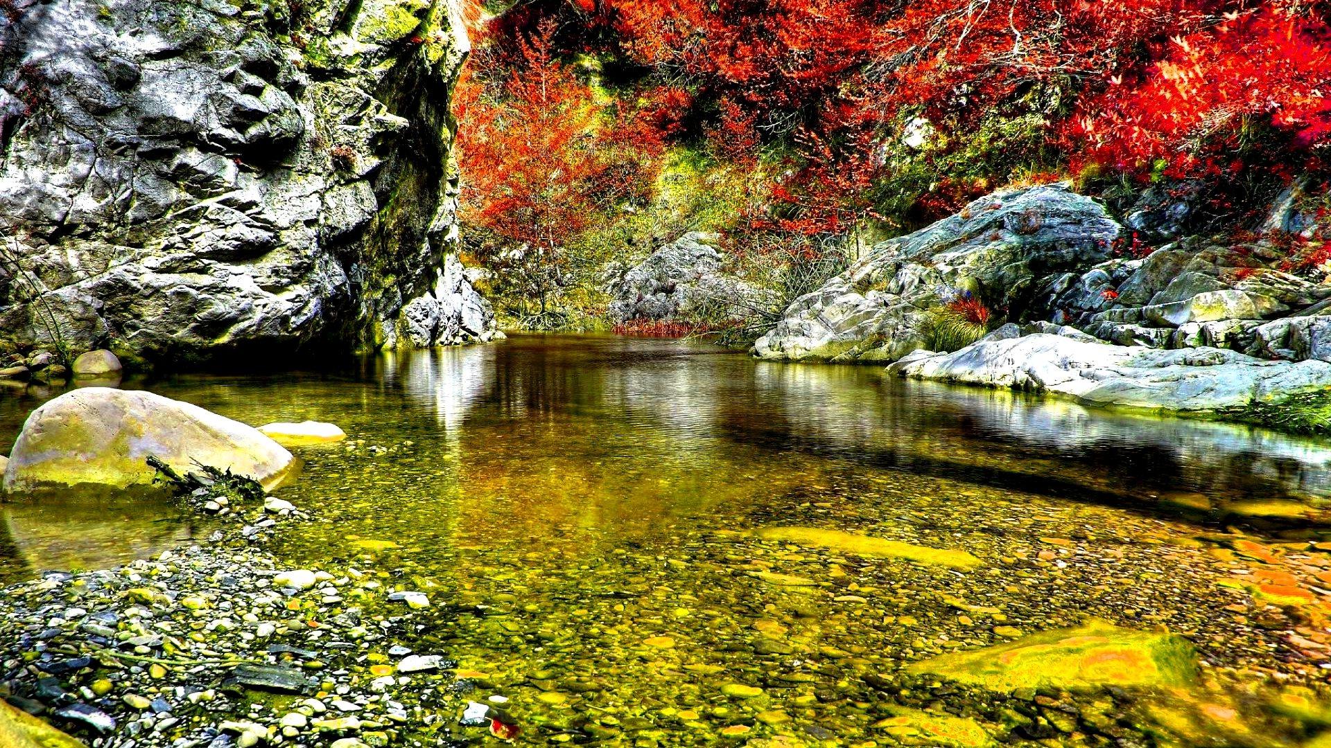 Pubg Iphone X Wallpaper Pond In Autumn 1920 X 1080