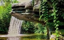Waterfall Pond Vegetation Landscape - 1920 X 1200