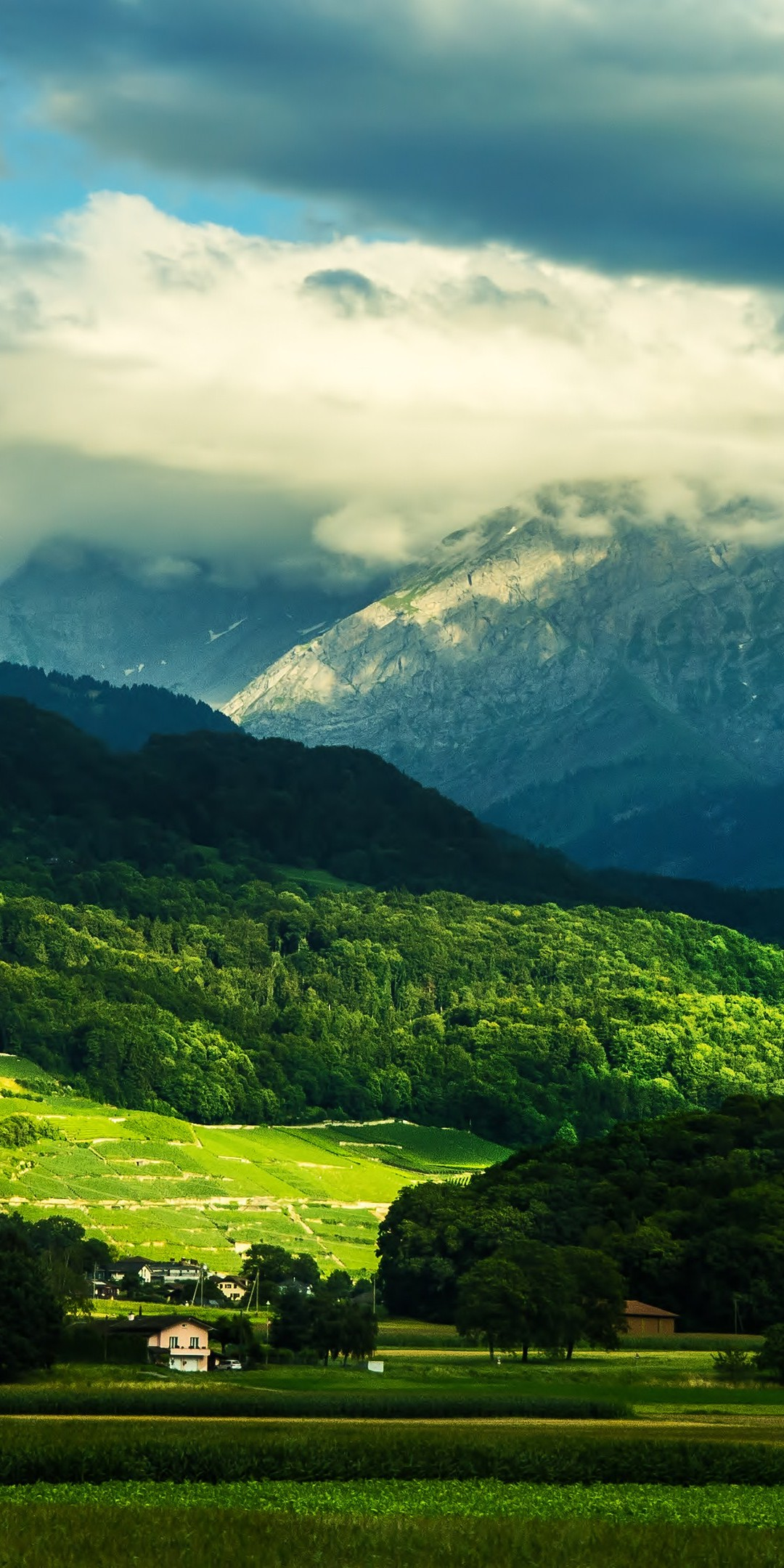 Plain Color Wallpaper For Iphone Beautiful Valley Wallpaper 1080x2160