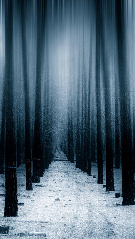 8k Car Wallpaper Download Dark Forest Woods Snow Winter 8k Vv Wallpaper 1080x1920