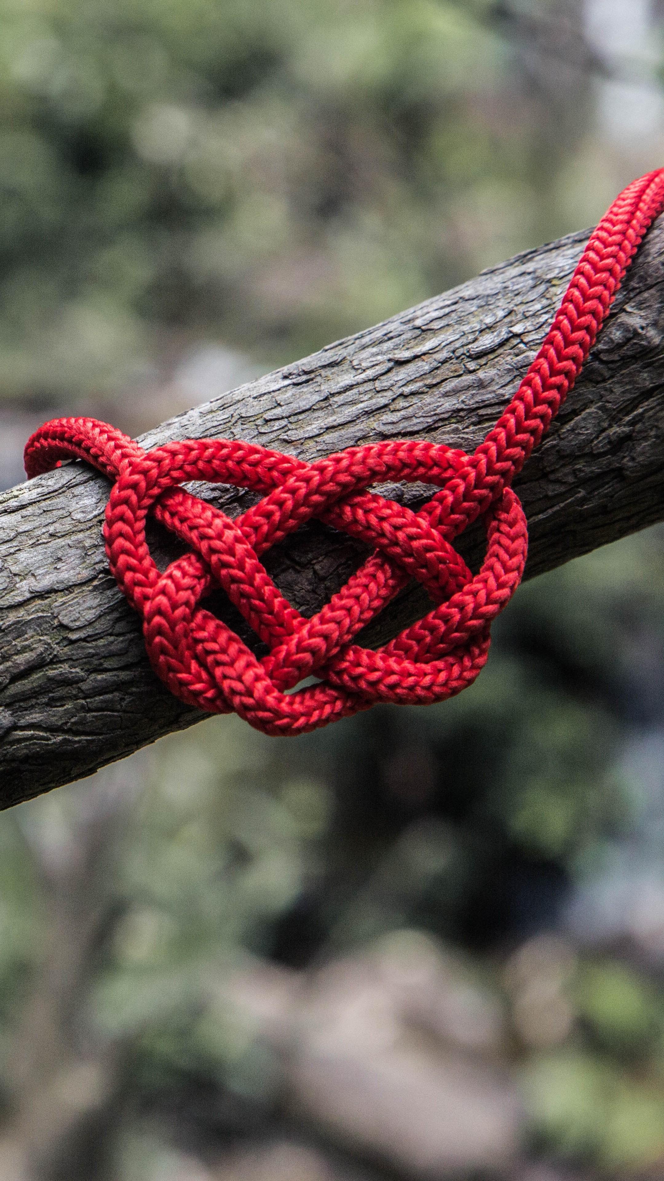 Pubg Iphone X Wallpaper Heart Rope Spelled Tree Wallpaper 2160x3840