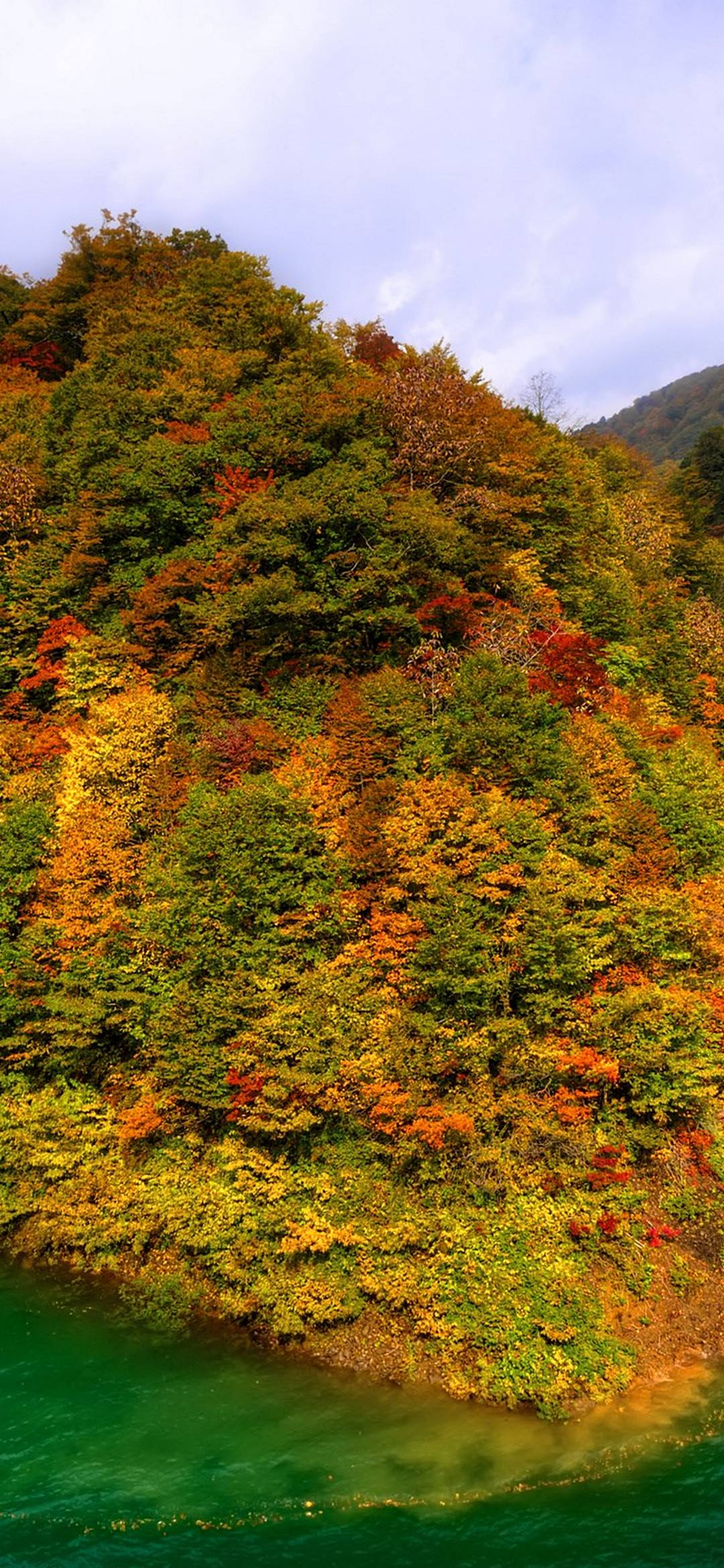 Fall Wallpaper Japan Mountains Japan Fall Forest Lake Autumn 1080x2340