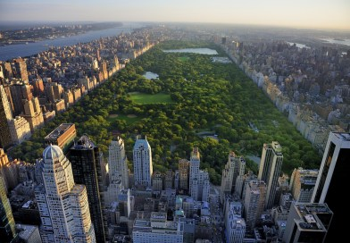 Central Park surrounded