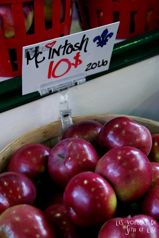 blog pvt canada montreal pvtistes couple tour du monde voyage pomme mc intosh marché jean talon petite italie