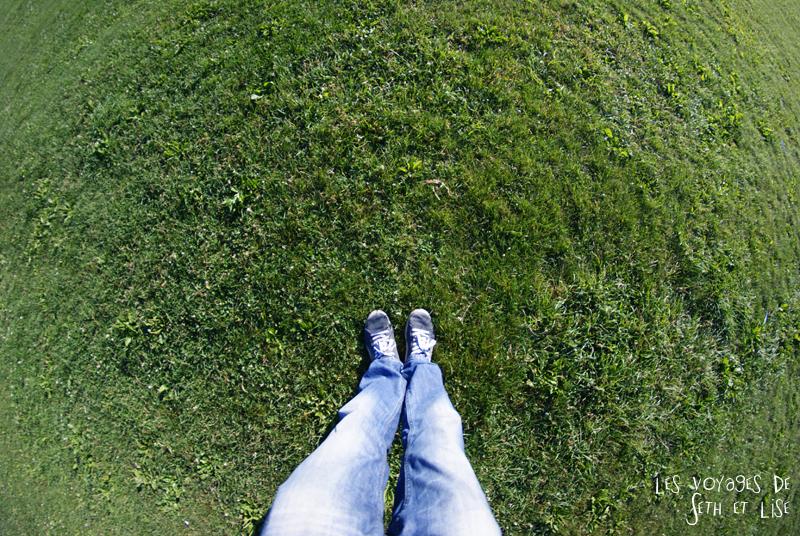 blog canada montreal pvt seth lise photo sunrise urbain soleil crépusucle grass herbe world