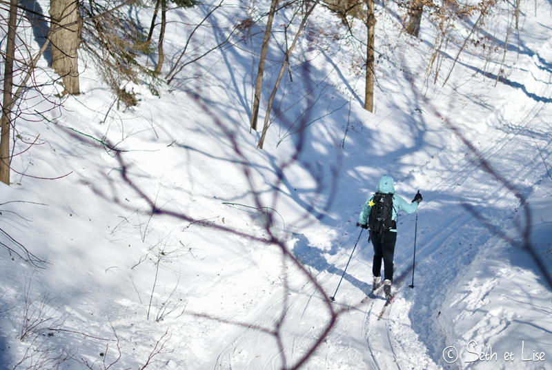 blog pvt canada voyage photographie montreal mont royal hiver neige ski fond
