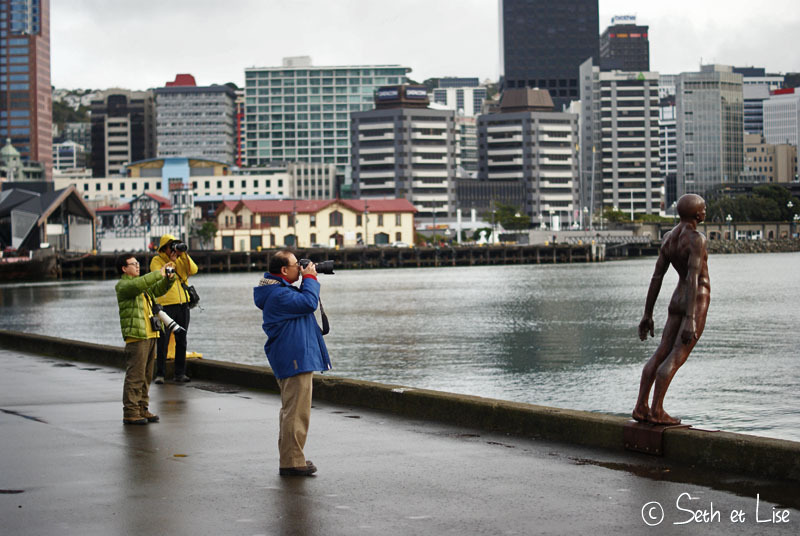 Wellington, la capitale la plus cool du monde