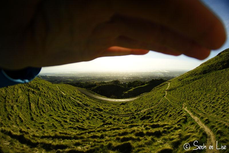 shadescape.jpg
