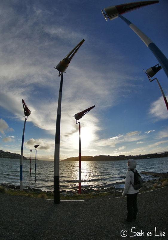 windysculpt.jpg