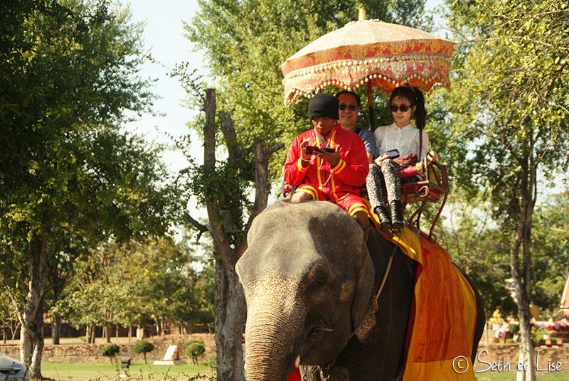blog voyage promenade elephant thailande asie phajaan