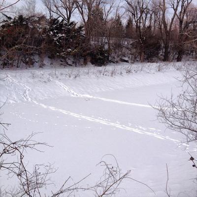 chenal_neige