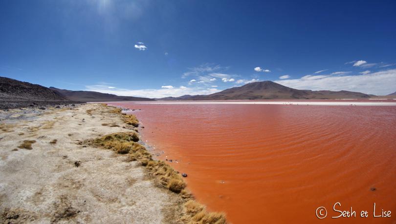 laguna colorada view