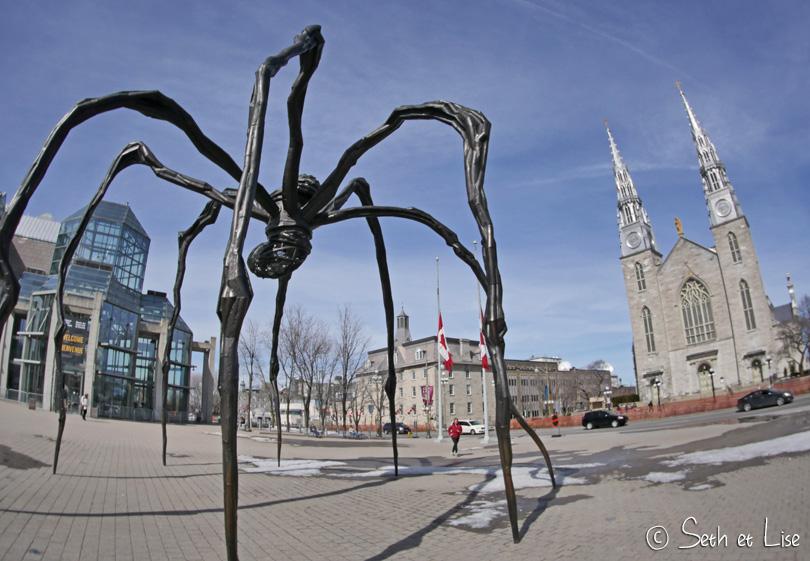 spider ottawa sculpture