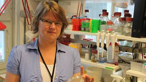 forskaren Karin Hjort