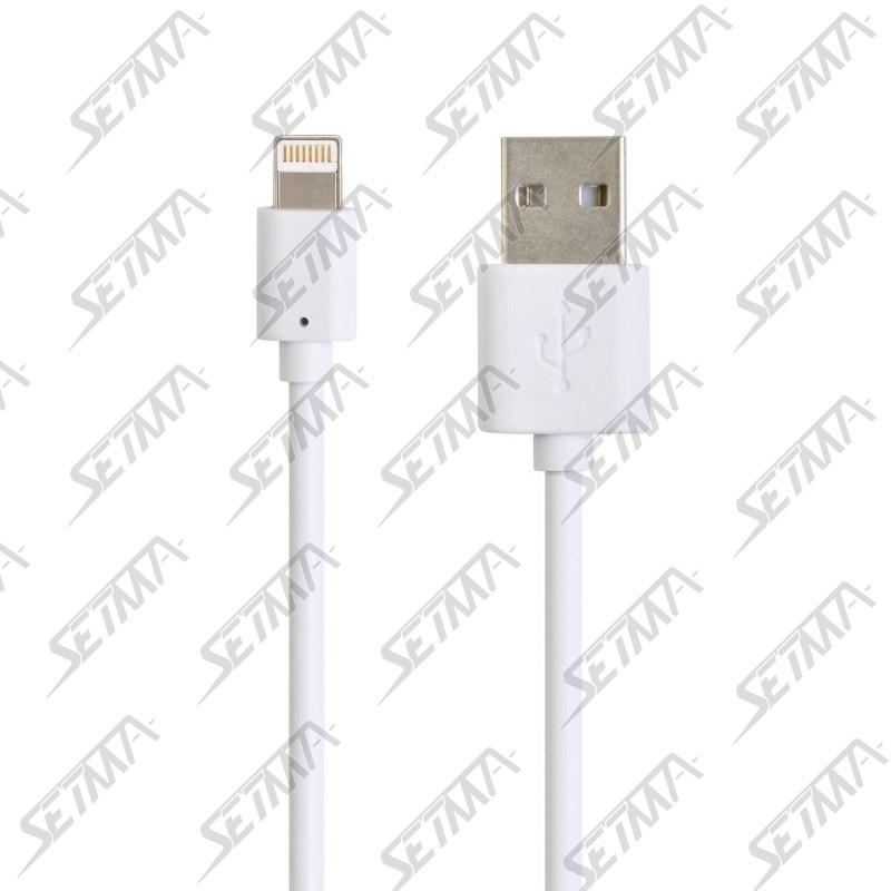 CABLE USB COMPATIBLE APPLE LIGHTNING POUR IPHONE 5/6