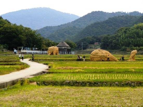 Straw Art - Shodoshima