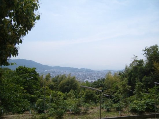 Takamatsu from Shikoku Mura